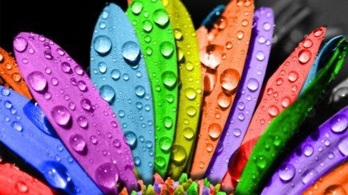 warna-cantik