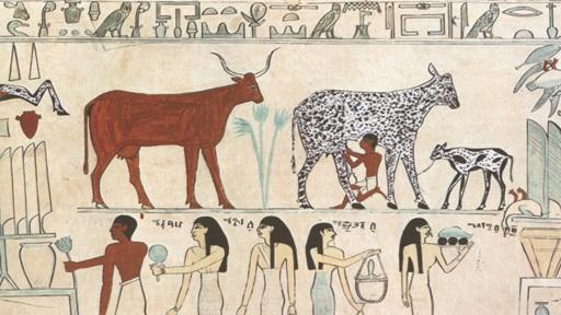 Domestikasi Hewan Neolitik