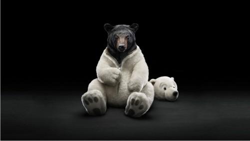bear-saham-forex
