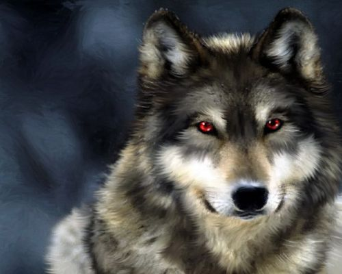 Serigala 2
