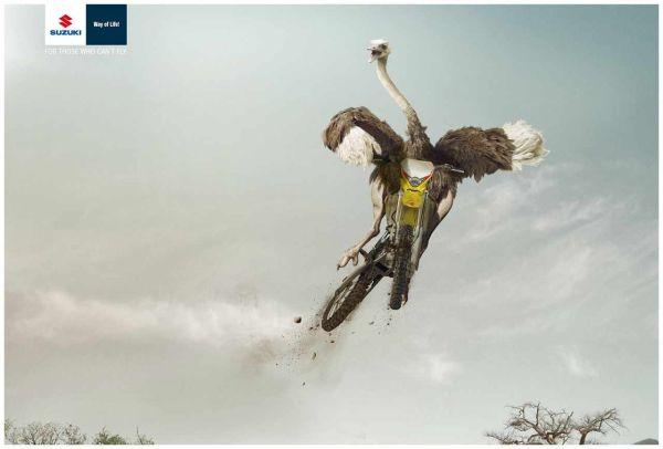 Suzuki Ostrich Creative Advertisement