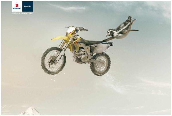 Suzuki Penguin Creative Advertisemnet