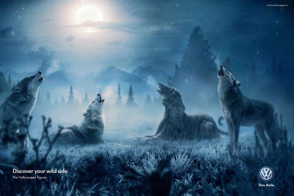 Volkswagen Wolves Creative Advertisement