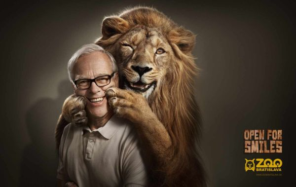 Zoo Bratislava Lion Creative Advertisement