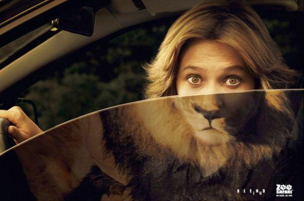 Zoo Safari Creative Advertisement