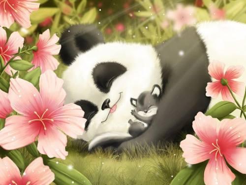 Foto Gambar Panda Lucu 5 Lampu Kecil