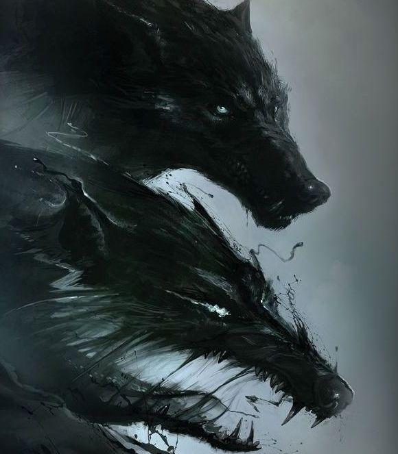 Gambar ilustrasi serigala