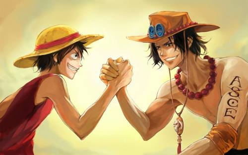 Portgas D Ace Luffy
