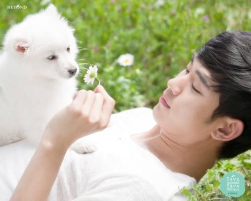 Gambar Foto Kim Soo Hyun 12