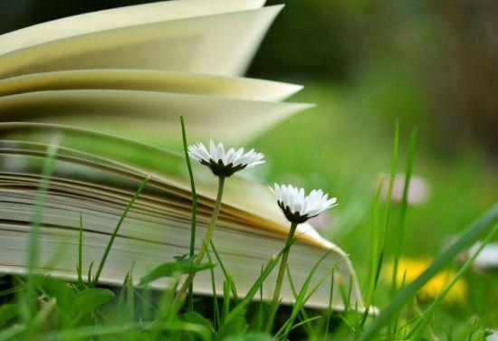 membaca menulis bercerita